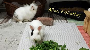 Günther und Alina